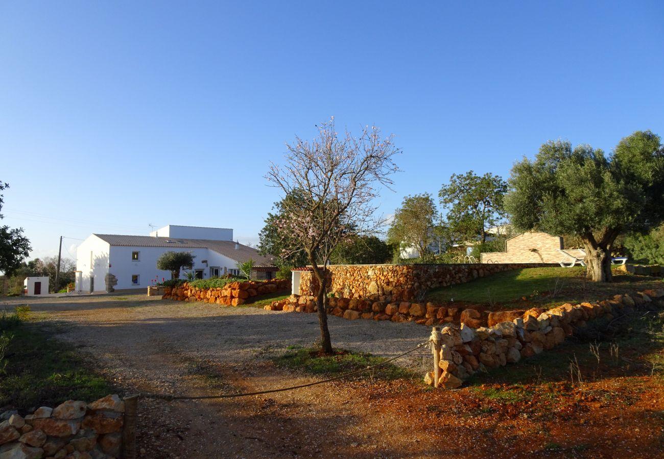 Villa in Albufeira - Gold CIP
